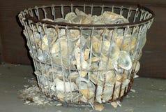 Coquilles d'huître vides dans un panier Photos stock