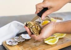 Coquilles d'huîtres crues images stock