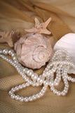 Coquilles de coque et perles de mer photo stock