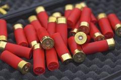 Coquilles de fusil de chasse Photographie stock libre de droits