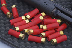 Coquilles de fusil de chasse Photo libre de droits
