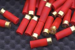 Coquilles de fusil de chasse Photo stock