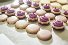 coquilles de macarons dans un plateau Processus de faire le macaron, dessert français, photos libres de droits