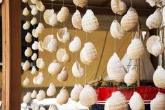 Coquilles de mer accrochant comme décor Photographie stock libre de droits