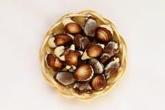 Coquilles de mer formées par bonbons au chocolat Photographie stock
