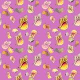 Coquilles de mer, sur le fond rose illustration stock