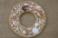 Coquilles de mer sur un cercle Image libre de droits