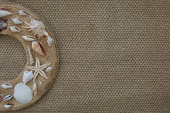 Coquilles de mer sur un cercle Photos libres de droits