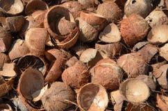 Coquilles de noix de coco, fond Photographie stock