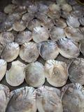Coquilles de perle Photographie stock libre de droits
