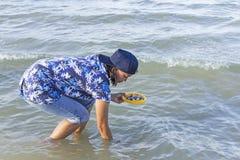 Coquilles de recherche de femme dans l'eau peu profonde pendant la marée basse photos stock