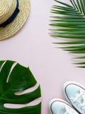 Coquilles, espadrilles, feuilles tropicales et chapeau d'été Image stock