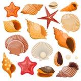 Coquilles et ensemble d'icône d'étoiles de mer illustration de vecteur