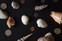 Coquilles et pièces de monnaie Photo stock