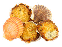 Coquilles St Jacques Stock Photos