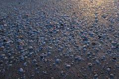 Coquilles sur la texture de fond de plage Photos stock