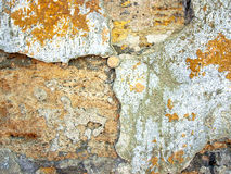 coquina的老墙壁的纹理崩裂了 图库摄影