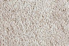 Coquinoid limestone Stock Image