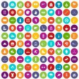 100 cor ajustada do esporte de inverno ícones ilustração do vetor