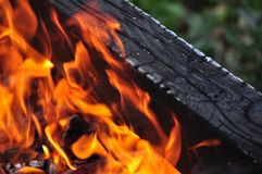 Cor bonita de queimar carvões vermelhos e a madeira carbonizada preta foto de stock