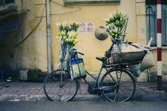 Cor da flor da rua, esquina da rua pequena Fotografia de Stock Royalty Free