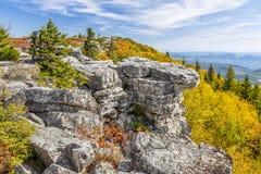 Cor da queda em rochas do urso Imagem de Stock