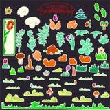 cor das flores e dos cogumelos Foto de Stock