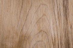 Cor de madeira natural do marrom da textura fotos de stock royalty free