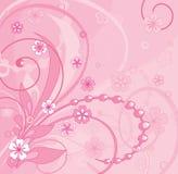 Cor-de-rosa Ilustração do Vetor