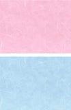 Cor-de-rosa azul de 2 fundos Foto de Stock