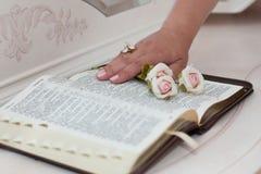 Cor-de-rosa bonito e mão no livro aberto Fotografia de Stock