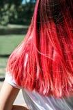 Cor cor-de-rosa brilhante dos cabelos da mulher fotografia de stock
