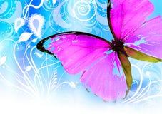 Cor-de-rosa buttefly Fotografia de Stock