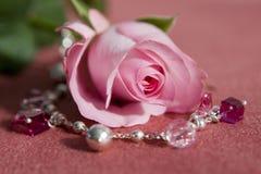 Cor-de-rosa cor-de-rosa e jewelery Fotografia de Stock Royalty Free