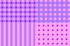 Cor-de-rosa do teste padrão Foto de Stock