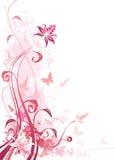 Cor-de-rosa floral Imagens de Stock Royalty Free