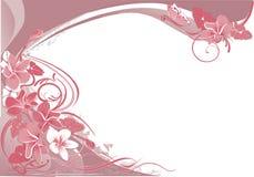 A cor-de-rosa floresce o fundo Foto de Stock