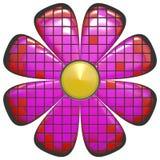 Cor-de-rosa grande do sumário da flor Imagens de Stock