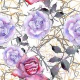 A cor-de-rosa levantou-se Flor botânica floral Teste padrão sem emenda do fundo ilustração do vetor