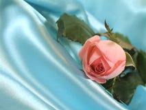 A cor-de-rosa levantou-se no cetim azul Fotografia de Stock Royalty Free