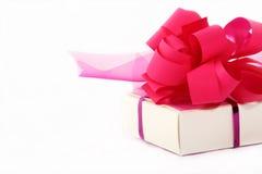 Cor-de-rosa pouco presente Fotografia de Stock