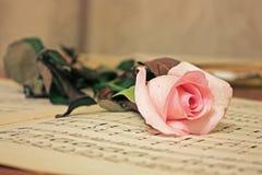 Cor-de-rosa tratamento-cor-de-rosa e vela da beleza Imagens de Stock