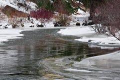 A cor do inverno Imagem de Stock Royalty Free