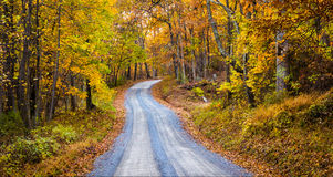 Cor do outono ao longo de uma estrada de terra em Frederick County, Maryland Fotografia de Stock