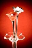 Cor do vintage: Flor feita do vaso de vidro no fundo vermelho imagens de stock