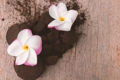 Cor doce e borra de café do Plumeria do close up no backg de madeira velho Fotografia de Stock