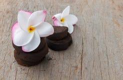 Cor doce e borra de café do Plumeria do close up no backg de madeira velho Fotos de Stock Royalty Free