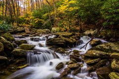 Cor e cascatas do outono em Boone Fork ao longo de Ridge Par azul Imagem de Stock