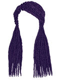 Cor longa na moda do roxo dos cornrows do cabelo Gráficos realísticos Fá Fotografia de Stock