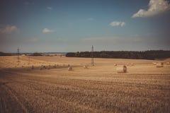 Cor retro de pacotes da palha em campos colhidos Fotografia de Stock Royalty Free